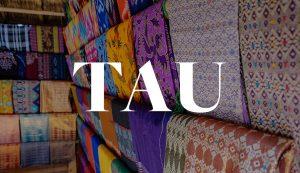 Tau Image
